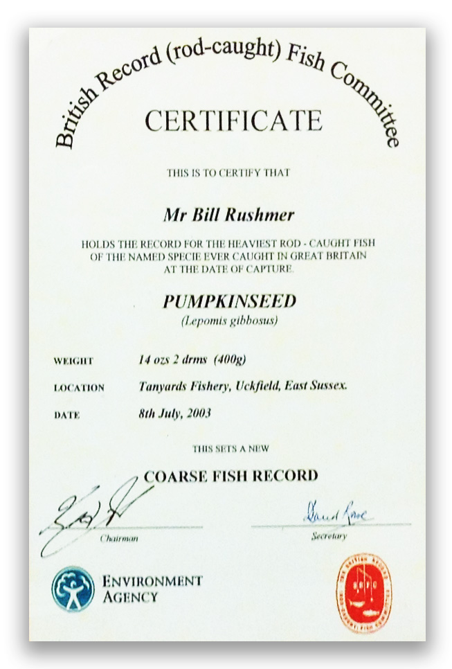 British Record Certificate - Pumpkinseed