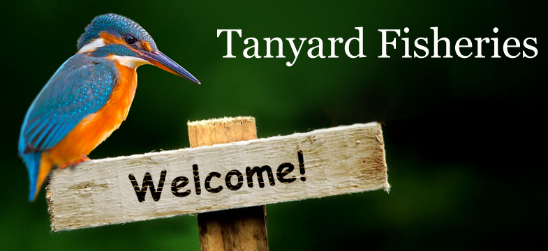 Tanyard Fisheries